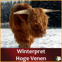 Winterpracht Hoge Venen via http://www.feestdagen-belgie.be/